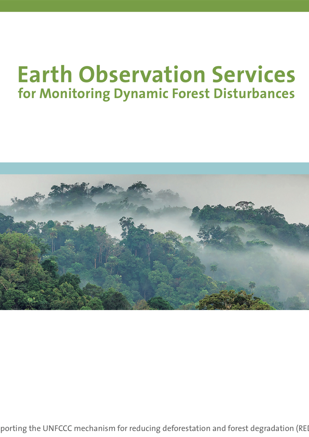 Earth Observation Services for Monitoring Dynamic Forest Disturbances
