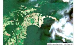 Representation of Deforestation with Sentinel-1 data Gabon 2015-2017